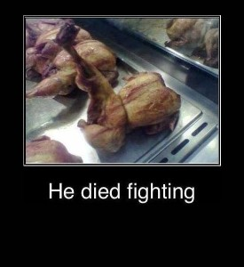 chicken-died-fighting