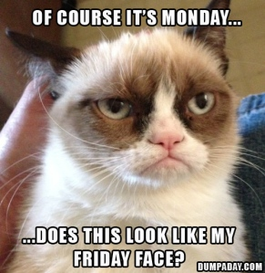 of-course-its-monday-does-this-look-like-my-friday-face-grumpy-cat