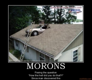 morons-hilarious-funny-car-reverse-roof-how-the-hell-moron-m-demotivational-poster-1220425446