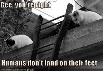 humans-not-land-feet