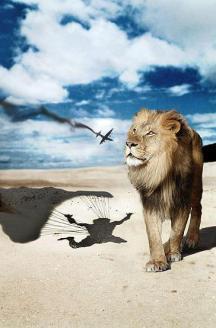 lion-wait-parachute