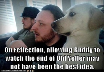 the-ending-is-pretty-ruff