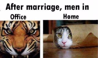 after-marriage-men-in-office-and-home-difference-funny-image