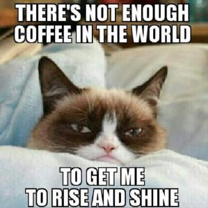 grumpy-cat-rise-and-shine