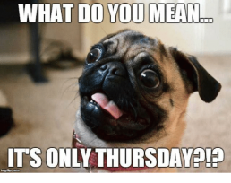 what-do-you-mean-its-only-thursday-p-ingfip-com-14572284