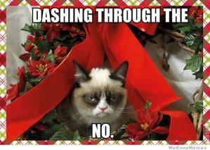 Dashing-Through-the-No
