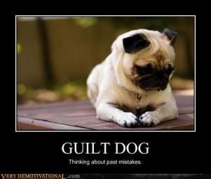 Funny-Animals-Guilt-Dog-Thinking-About-Past-Mistakes-Image