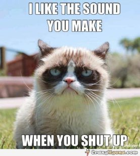 funny-grumpy-cat-hates-you-when-you-are-talking