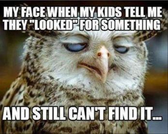 ad96e41e509d88c1a-funny-mom-memes-kids-mom-funny-humor