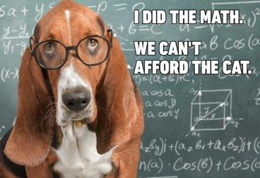 13-Hilarious-Dog-Memes-768x526