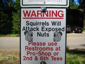 Clever-signs-2