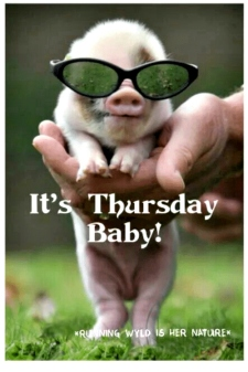 its-thursday-baby-ruining-wyld-is-her-nature-top-27-54019200